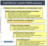 CASTING NEPA Fact Sheet - flow chart