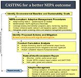 CASTING NEPA Fact Sheet - flow chart